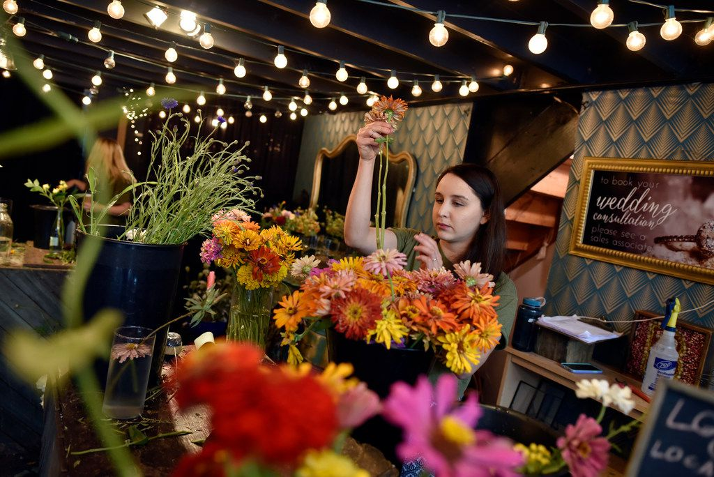Carina Vargas, 29, a flower designer and event planner, tends to zinnias flowers while working at Dirt Flowers in Dallas.