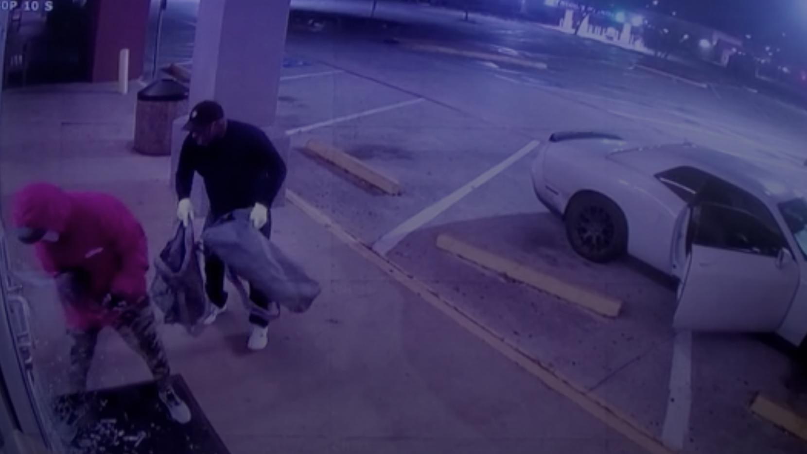 Cámaras de seguridad de la tienda Petland de Preston Road muestran el robo en Noche Buena.
