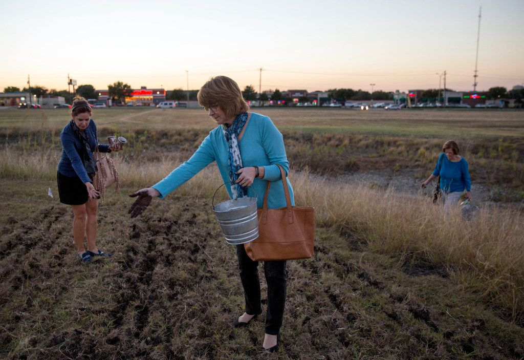 """Mary Ruehle and Ann Willet toss their """"seed bombs"""" into a field as Frances Jones joins them following a class on seed saving at the Texas A&M AgriLife Research and Extension Center."""