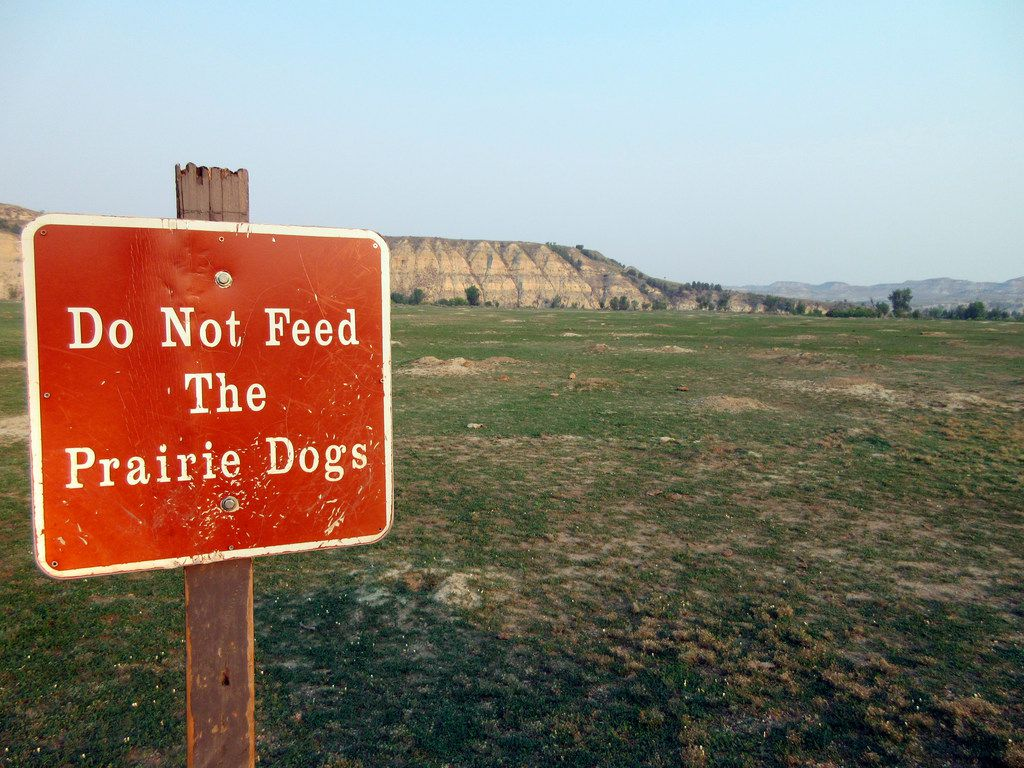 """This Sept. 3, 2017 photo shows a """"Do not feed the prairie dogs"""" sign at Theodore Roosevelt National Park in Medora, N.D., with a view of the badlands in the background."""