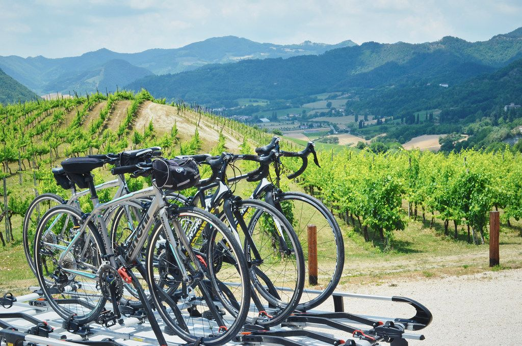 Fort Worth Chef Lanny Lancarte, owner of Righteous Foods and Chomp Catering, will join bestselling author Larry Olmsted for a week-long group cycling tour of one of Emilia-Romagna's most scenic and gastronomic regions.