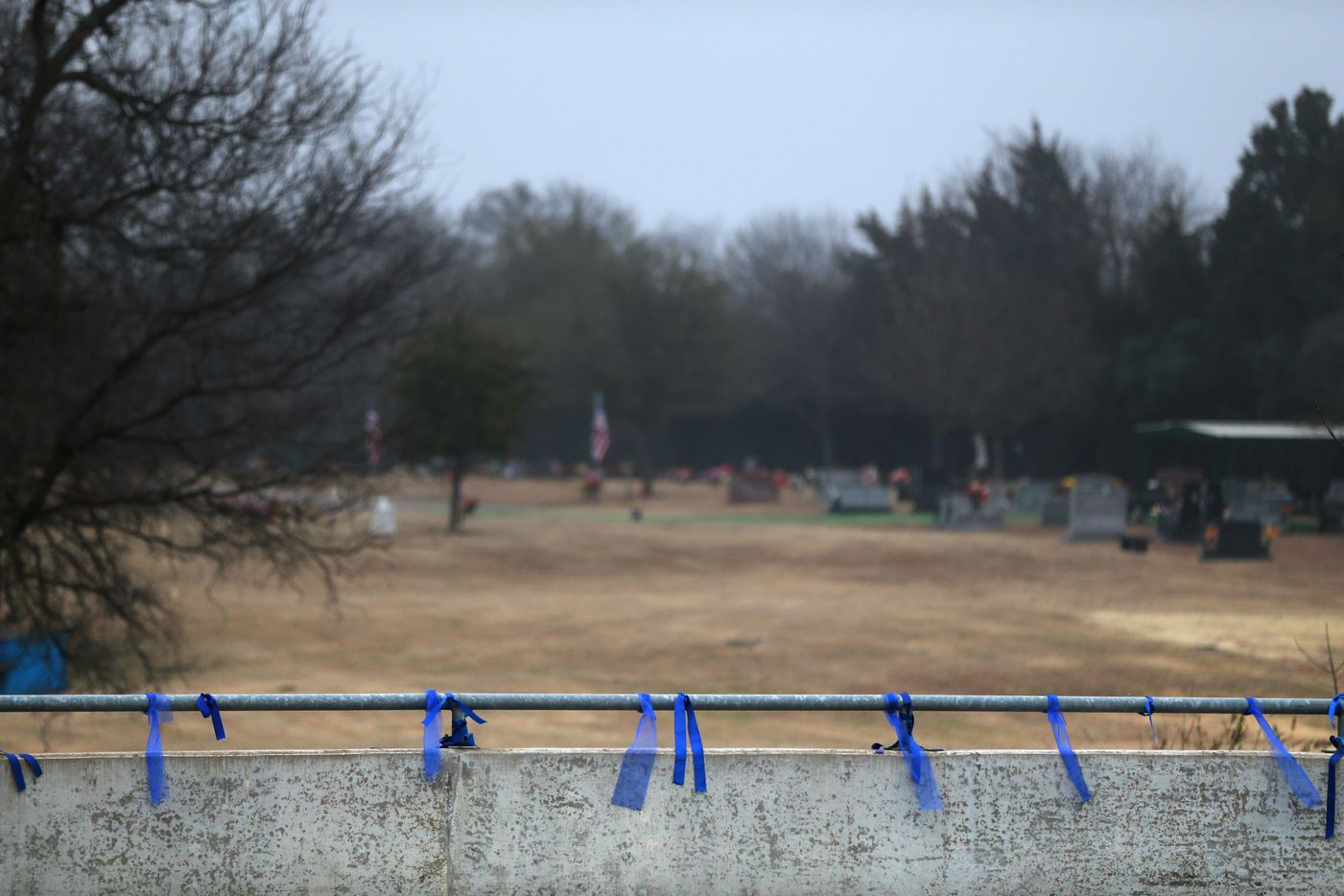 Blue ribbons are tied along Rowlett Road before the funeral procession for Richardson police officer David Sherrard outside Sacred Heart Cemetery in Rowlett, Texas on Tuesday, Feb. 13, 2018.