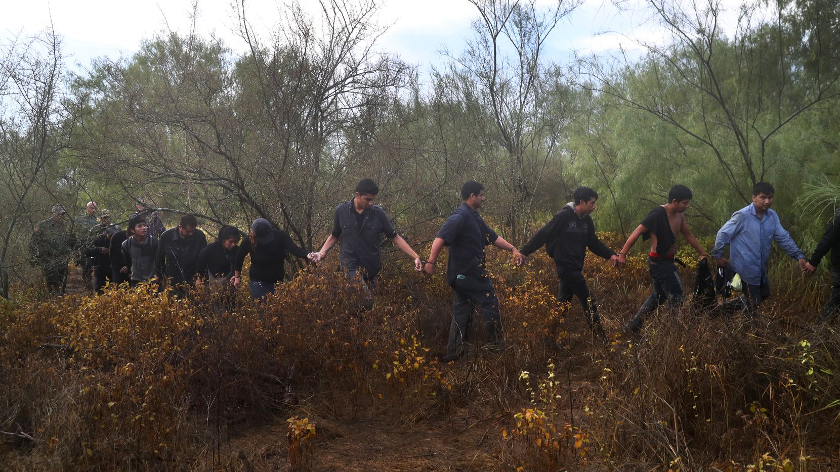 Detained  immigrants were led through the brush after being captured by U.S. Border Patrol agents recently in Roma, Texas. (John Moore/Getty Images)