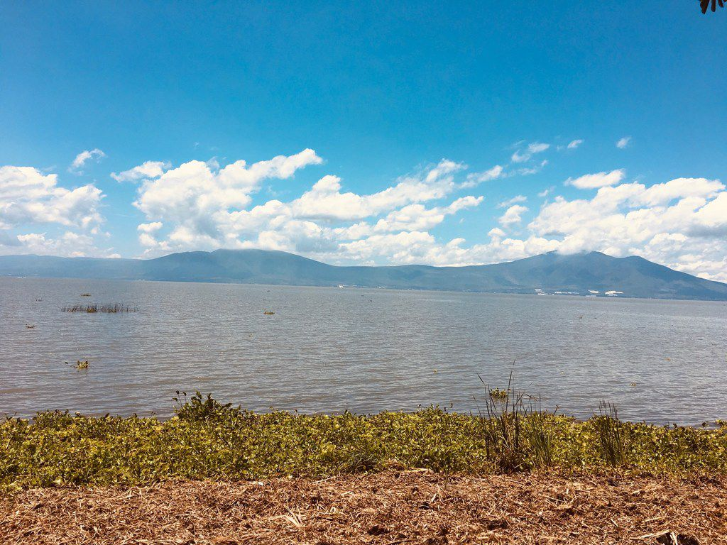 The shores of Lake Chaoala in Ajijic, Mexico, on the August 2, 2019.
