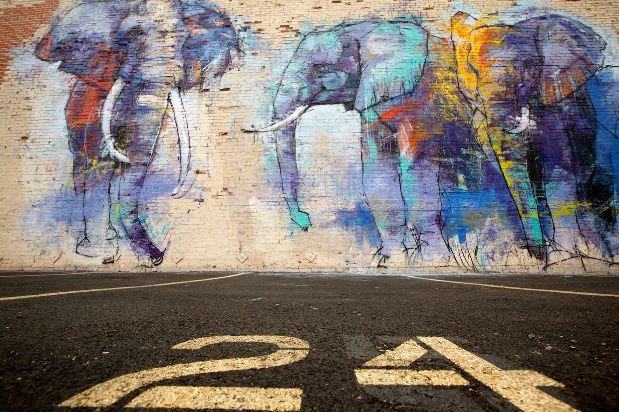 Artist Adrian Torres' mural, Deep Ellumphants, at Main St. and Exposition Ave. (Tom Fox/The Dallas Morning News)