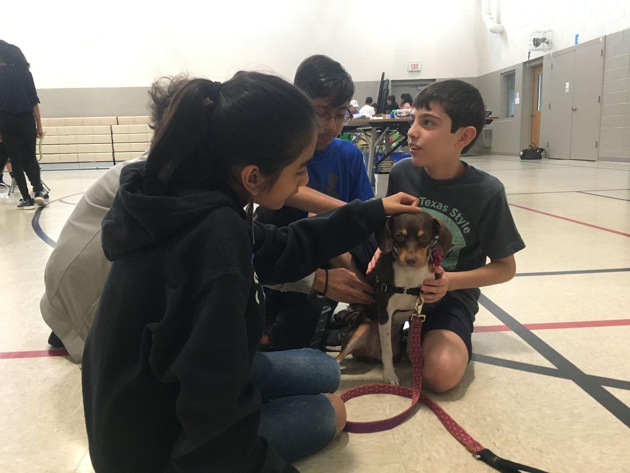 Students play with Amanda Luke's dog, Nola.