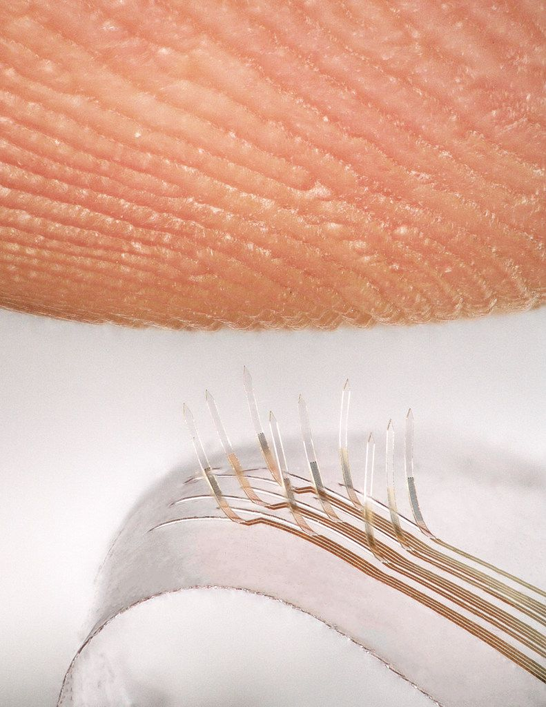 Electronic whiskers created by a team that includes UTD researchers sense a fingerprint.