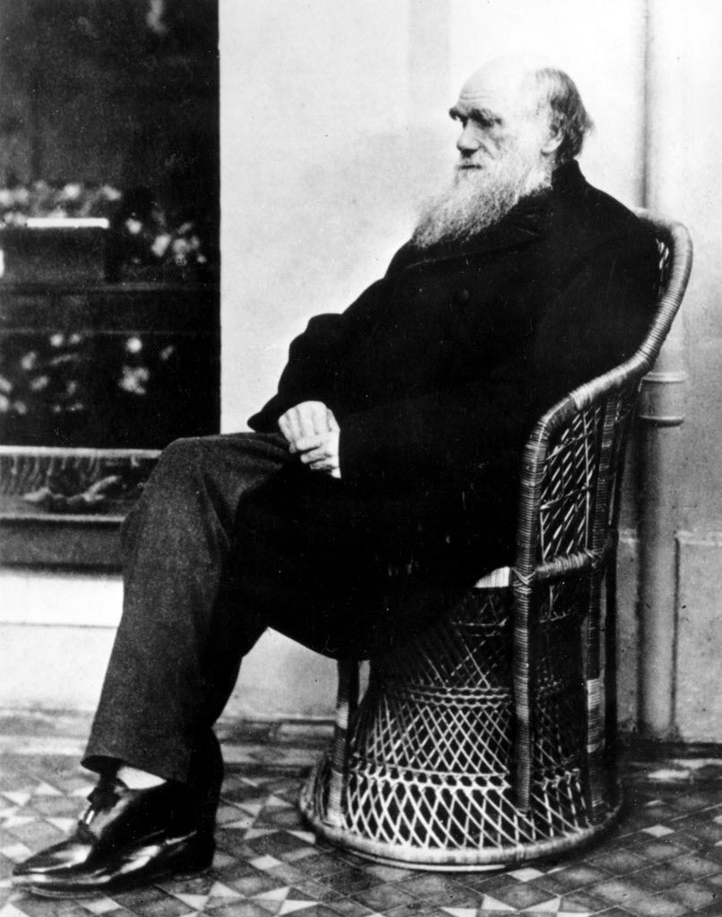 Charles Darwin poses in a wicker chair in 1875.