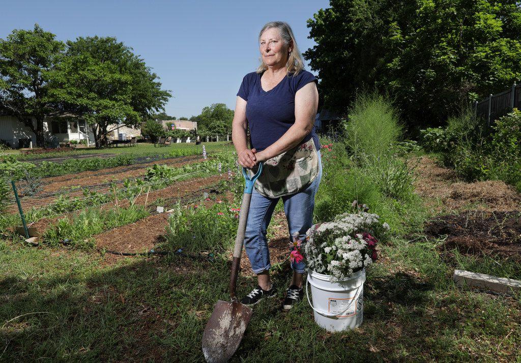 Amanda Vanhoozier tends to her flower garden in Coppell.