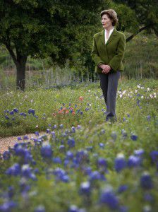 Former first lady Laura Bush walks by bluebonnets during a tour of the Native Texas Park at the Bush Center on the SMU campus in Dallas. (Jae S. Lee/The Dallas Morning News)