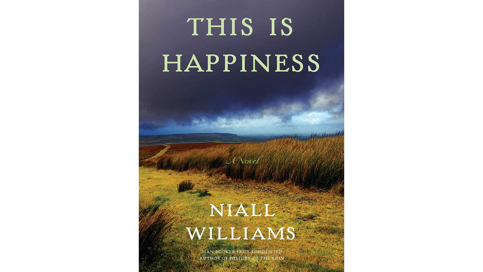 "Niall Williams writes a loving tribute to a bygone Ireland in ""This Is Happiness."""