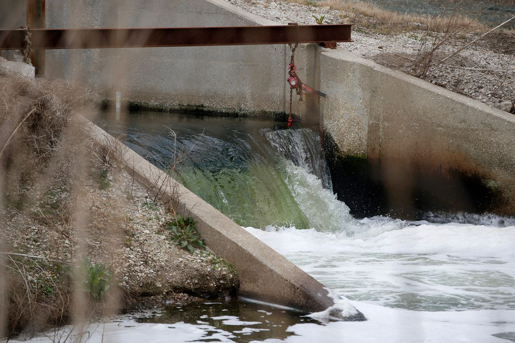 Treated water flows into a wetland that feeds into the Trinity River at the Central Wastewater Treatment Plant in Dallas.