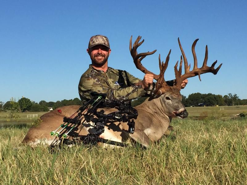 Travis D. Johnson was sentenced to two years of probation and 40 hours of community service for illegally killing a white-tailed buck.