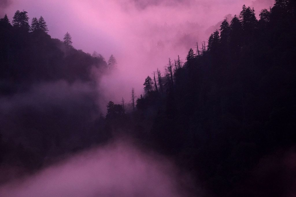 Fog settles near sunset in Great Smoky Mountains National Park in Tennessee. Formed between 200 million and 300 million years ago, the Great Smokies are some of the oldest mountains in the world.