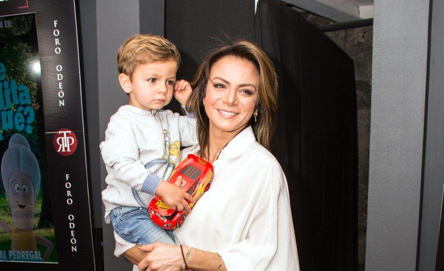 La actriz Silvia Navarro no tiene planes de telenovela en lo inmediato, pues dedica tiempo a su hijo León, de dos años./ AGENCIA REFORMA