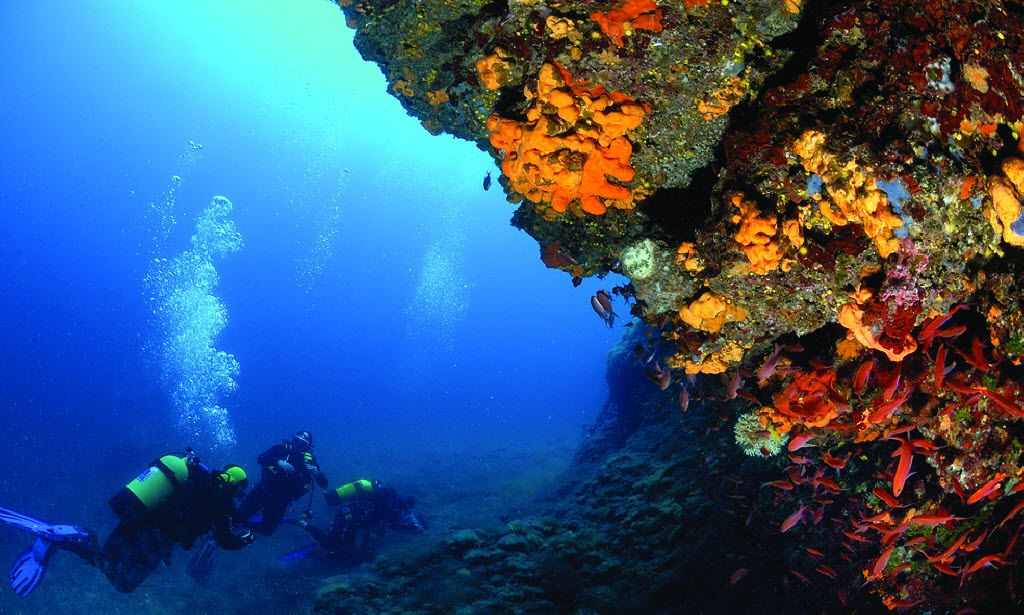 The Albanian Riviera offers ample opportunities for scuba diving.