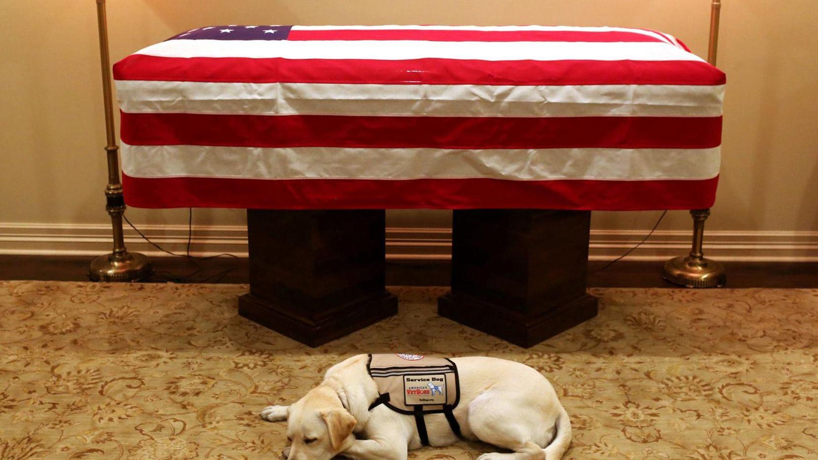 Sully junto a los restos del ex presidente George H.W. Bush. (AP/EVAN SISLEY)