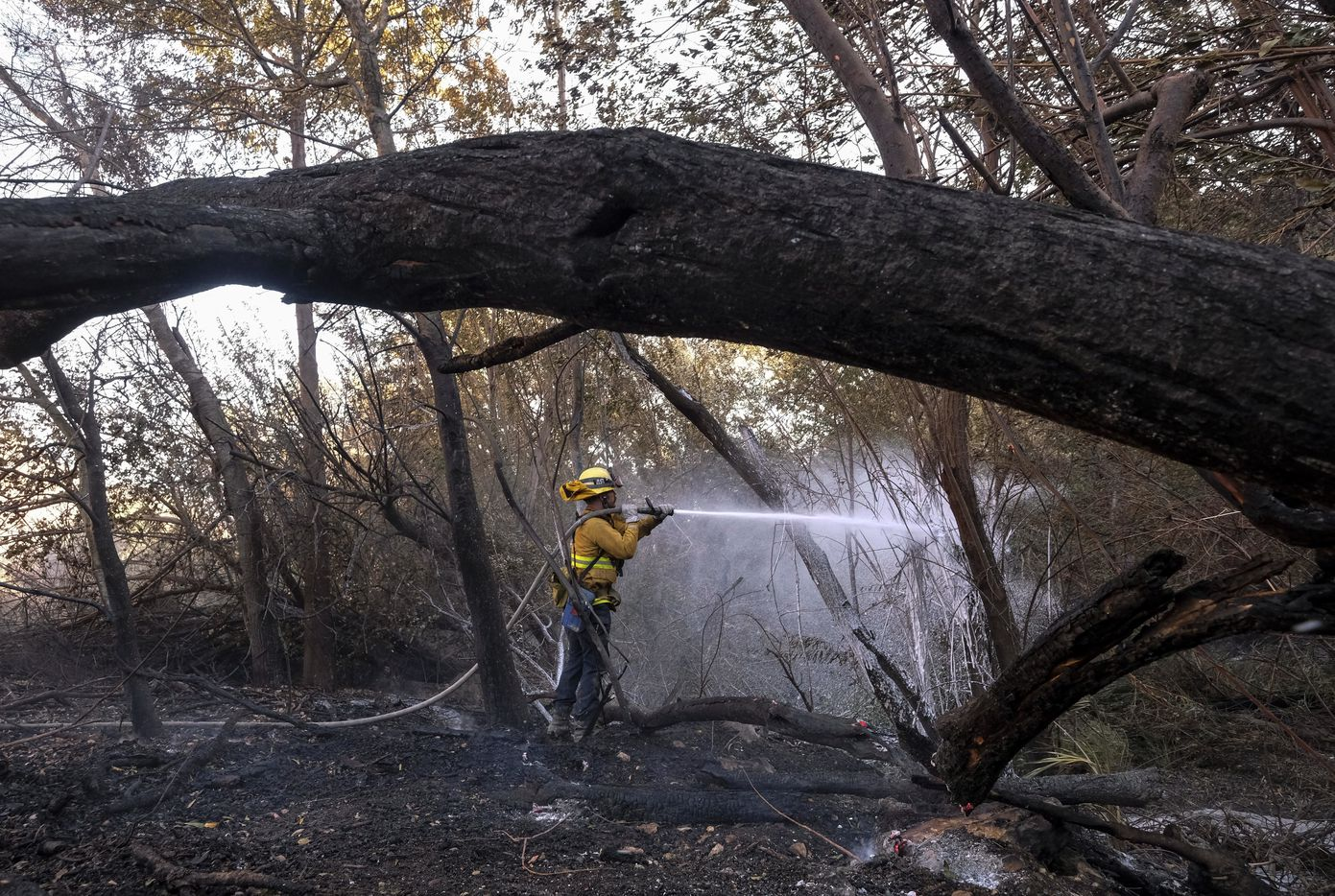 A firefighter sprays water on the remaining hot spots in an area in West Hills, Calif., on Nov. 11, 2018.