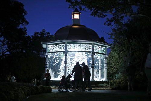 "Dallas Arboretum presenta ""12 Days of Christmas"" a partir de esta semana. (Nathan Hunsinger/The Dallas Morning News)"