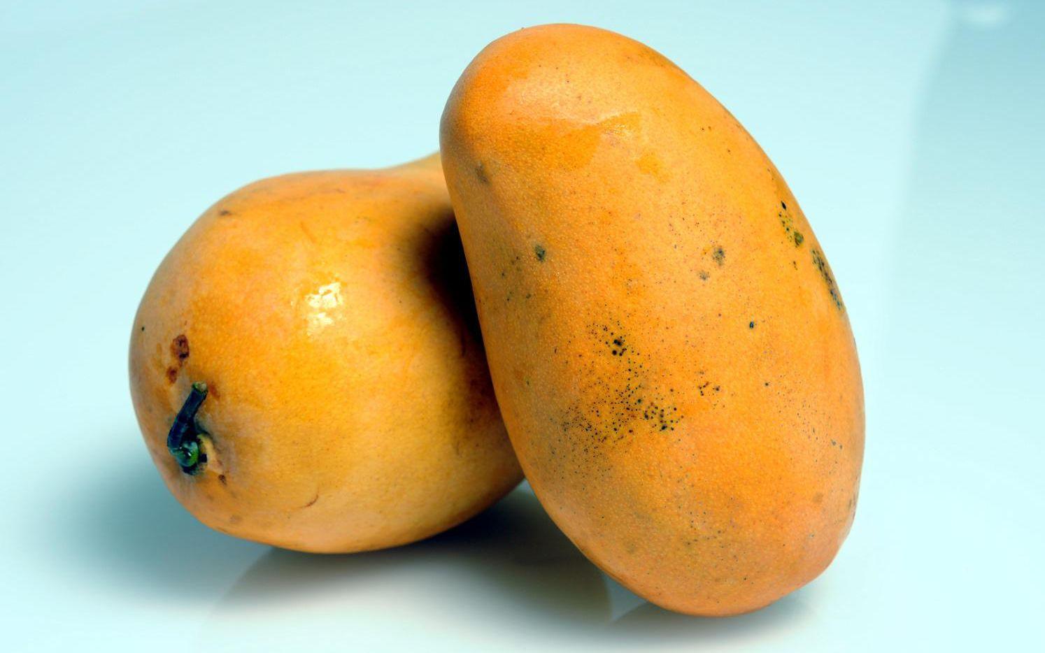 Mangos Ataulfo.(AGENCIA REFORMA)