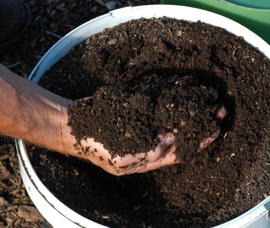 Compost, manure and even mulch can be contaminated with persistent herbicides, but there's a solution.