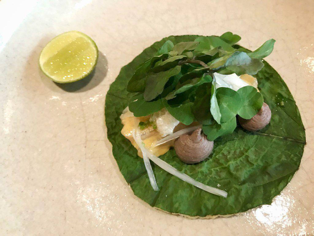 This one completely blew me away: raw sea bass on a corn tortilla with an hoja santa leaf pressed into it. The piped poufs are pureed xpelon beans from the south of Mexico; completing the taco are watercress, oxalis leaves and a terrific emulsified sauce made from cilantro stems, red jalapeno, ginger, lime and grapesee oil.