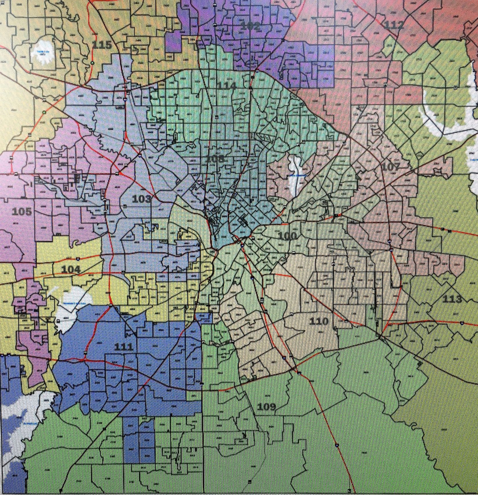 Dallas County House Districts map.