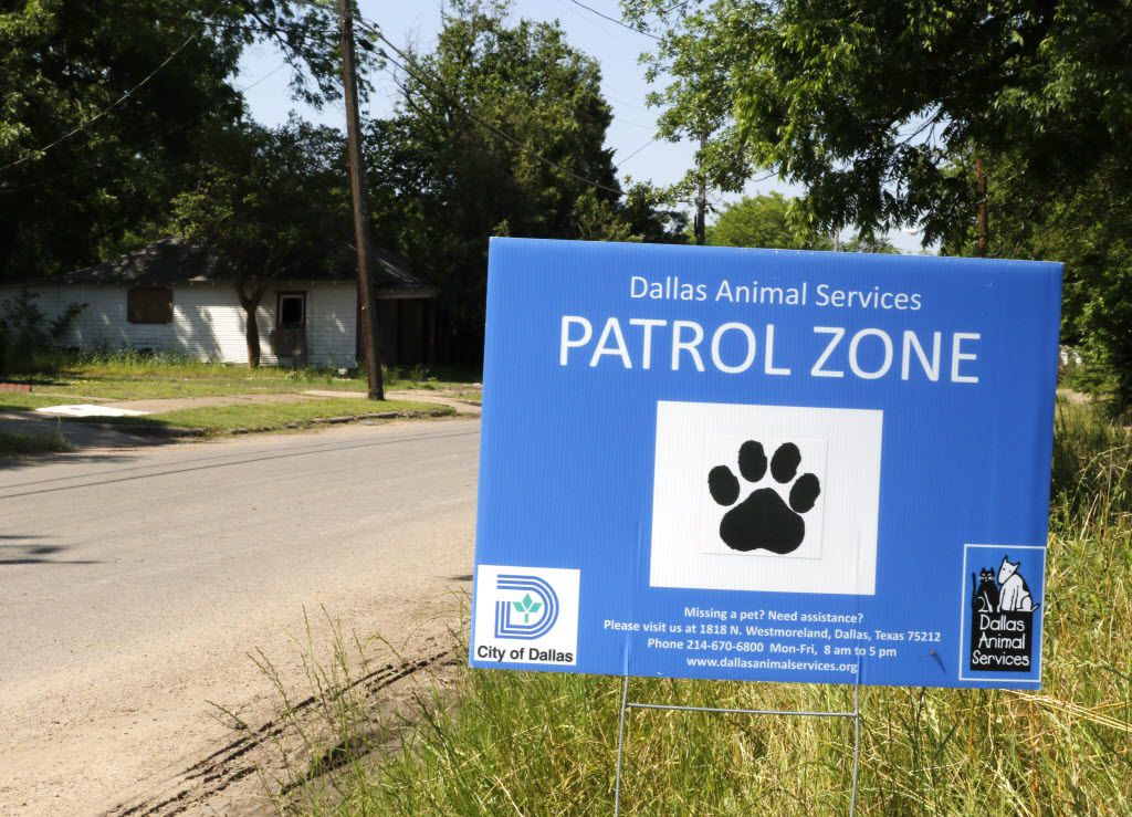 A Dallas Animal Services sign is now posted next to the vacant lot in the 3300 block of Rutledge St. where dogs attacked Antoinette Brown. Experts say increased enforcement is only one part of the solution. (David Woo/The Dallas Morning News)