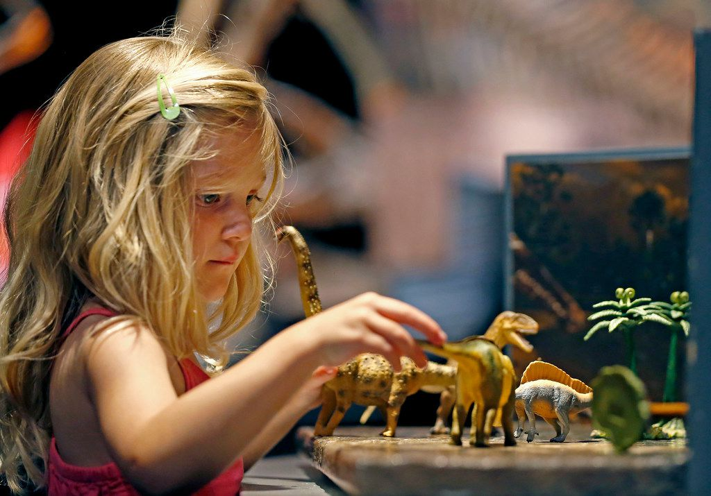 Kaydence Frymyer, 4, of Denton plays with dinosaur toys during a media preview of new dinosaur exhibit Ultimate Dinosaurs at Perot Museum of Nature and Science in Dallas on Thursday, June 21, 2018.
