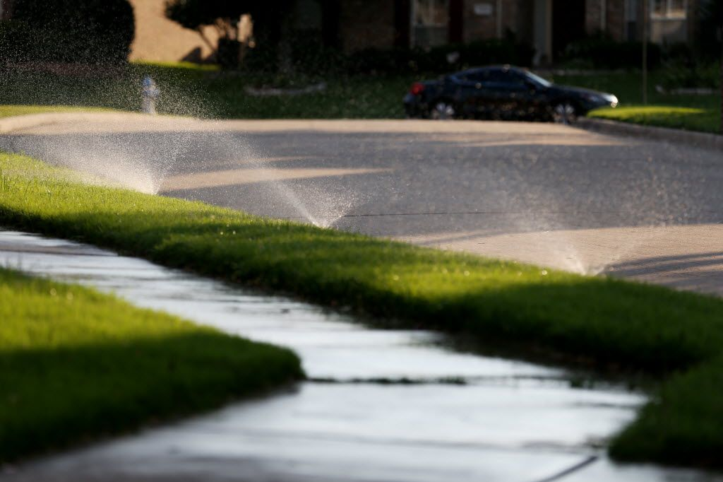 Sprinklers along Sagewood Court in Plano, one of the cities in the North Texas Municipal Water District.