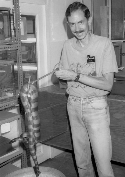 In this photo from 1991, Bob Butsch holds a snake with a hook at the Dallas Zoo's herpetarium. Butsch started volunteering at the zoo in 1987.