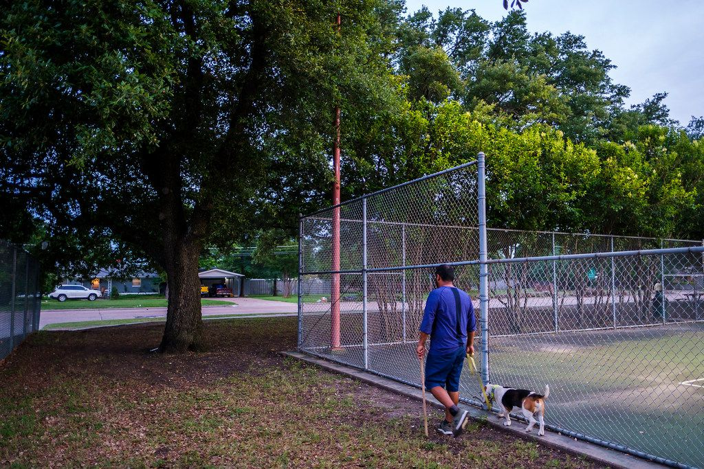 A man walked a dog past tennis courts at Ferguson Park on Monday near the site where two people were mauled by three Rottweiler-mix dogs on Saturday morning.