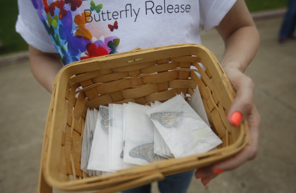 In this file photo, volunteer Christina Decker of Faith Presbyterian Hospice hands out butterflies to be released as part of a service to remember loved ones who have died.