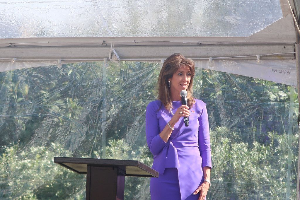 Tammie Jo Shults, the pilot who landed Southwest Airlines Flight 1380 during an emergency, was inducted into the  Texas Women's Hall of Fame.