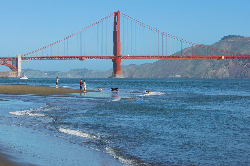 Crissy Field Beach offers impressive views of the Golden Gate Bridge. A staircase connects Crissy Field to the iconic span.