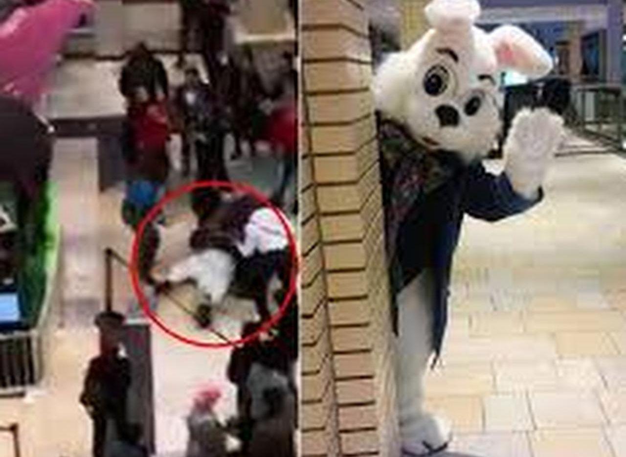 Este conejo se peleó con clientes de un centro comercial en Nueva Jersey.(YOU TUBE)