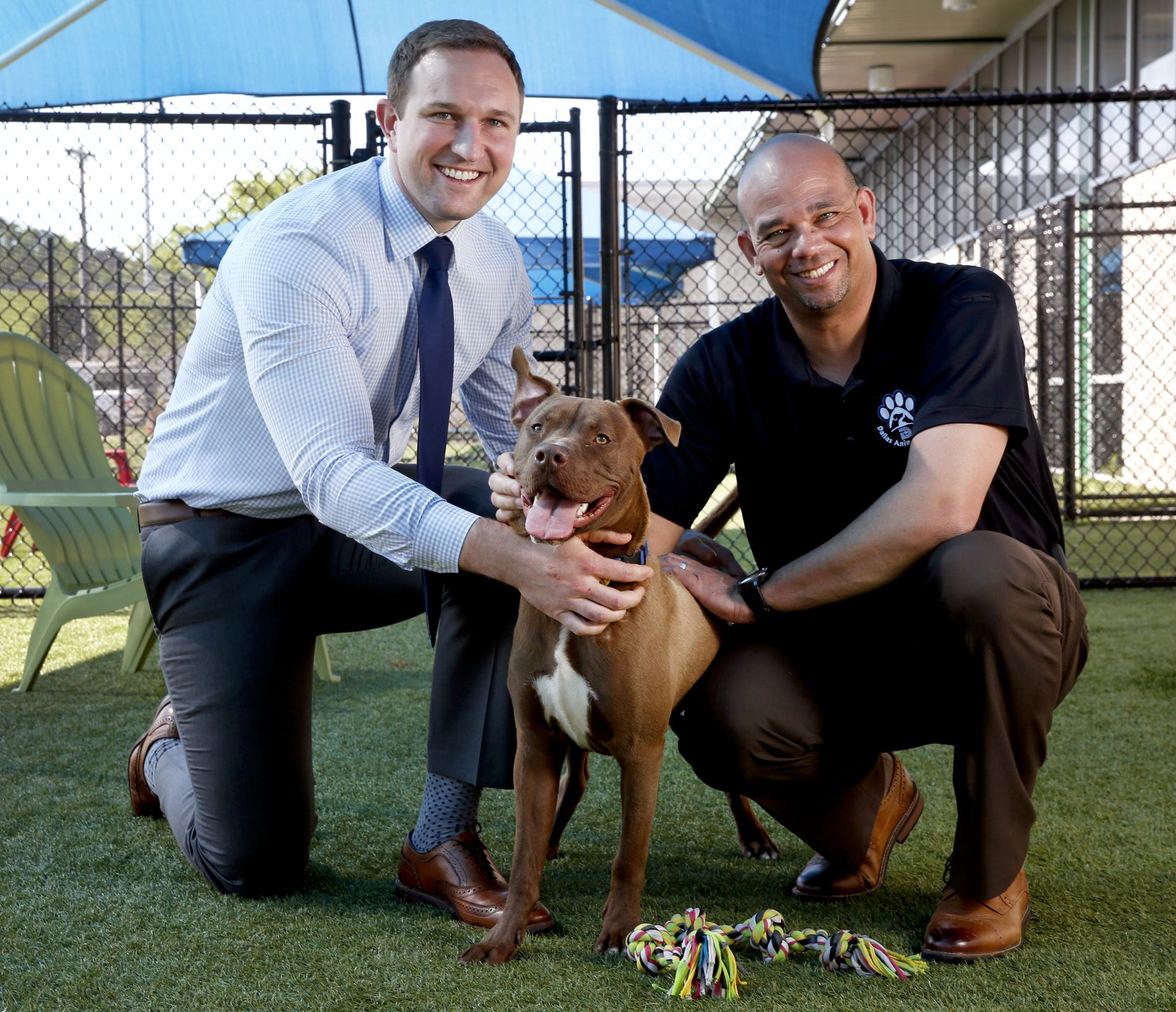 Ed Jamison (right),  director of Dallas Animal Services, and Ryan Rogers, assistant DAS director, with shelter dog Roger in one of the shelter's outdoor play yards Thursday.