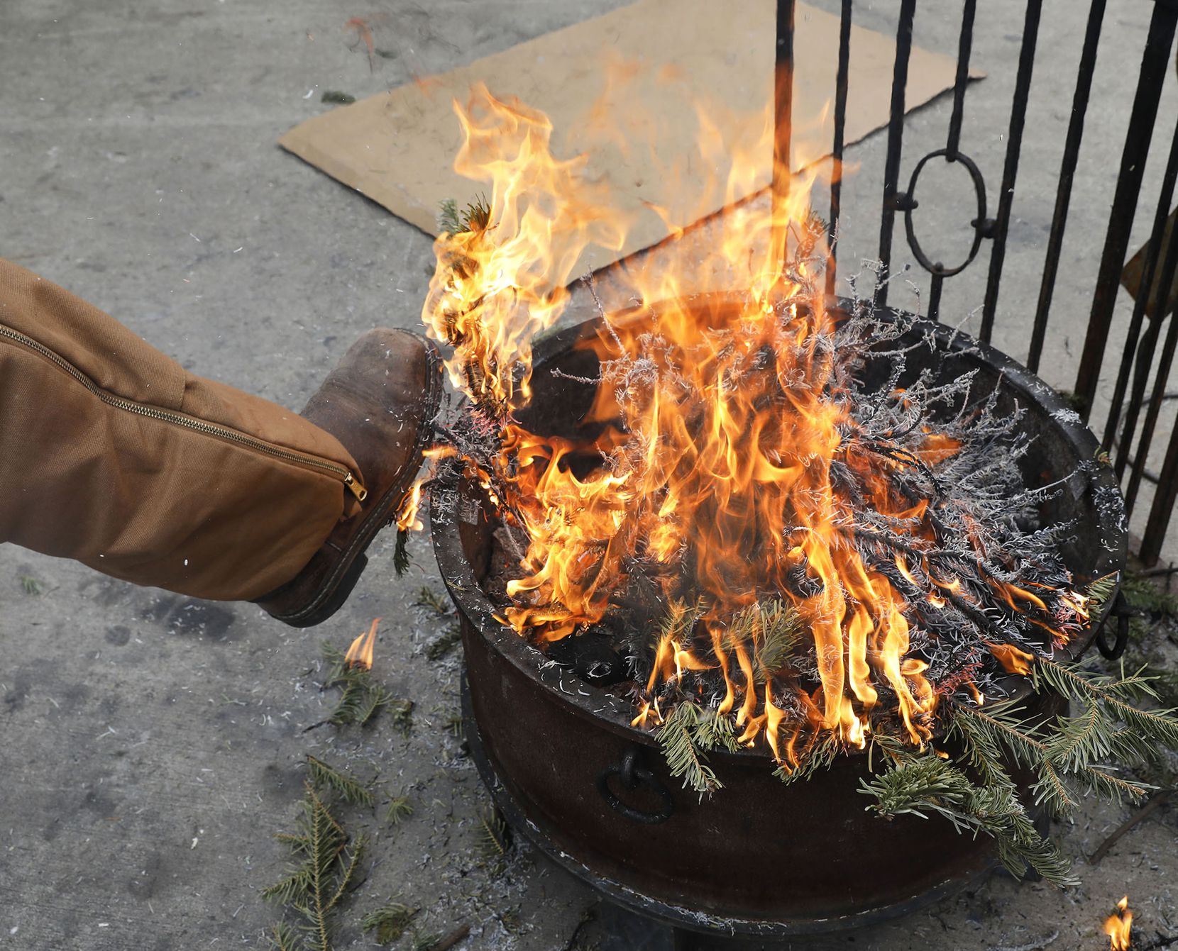 Omar Ibarra, 16, keeps warm after putting old Christmas tree branches on a fire at Ruibal's Plants of Texas on Tuesday in downtown Dallas.