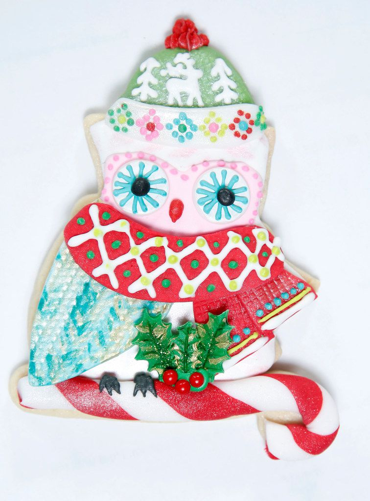 Owl Be Home for Christmas by Suzy Cravens