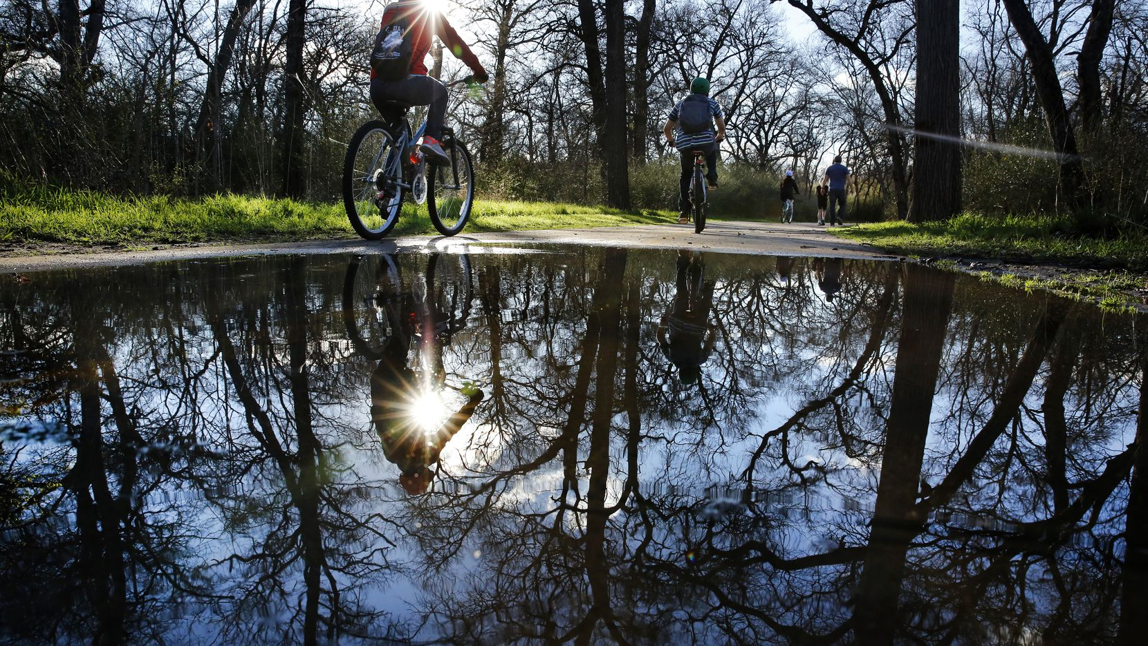 After overnight rains, cyclists and walkers navigate the water puddles along the paths of River Legacy Parks in Arlington