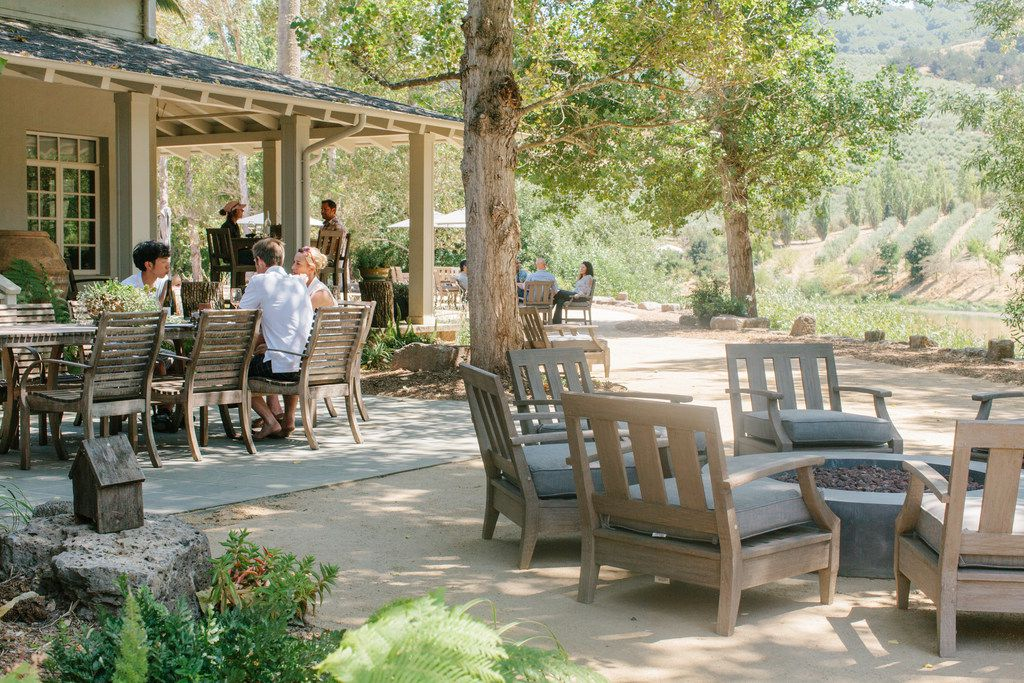McEvoy Ranch offers indoor and outdoor (pictured here) olive and wine tastings.