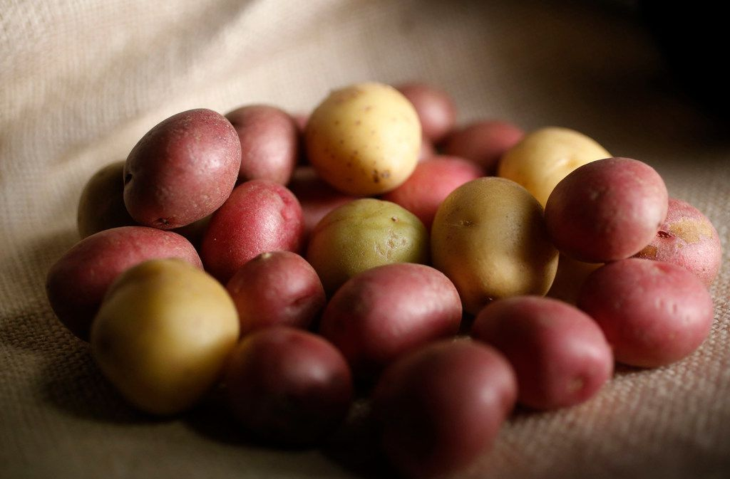 A variety of baby potatoes