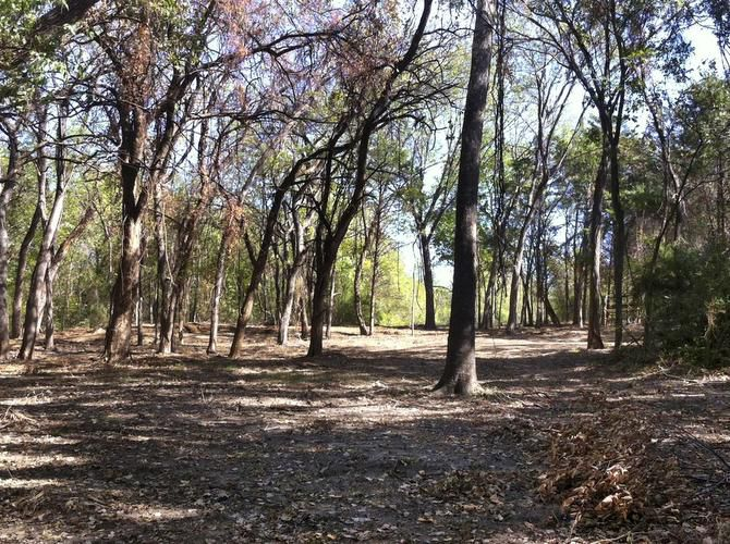 Dallas officials say Wayne Kirk's River Ranch Educational Charities has cleared horse park property without approval by the city and illegally erected a fence there.