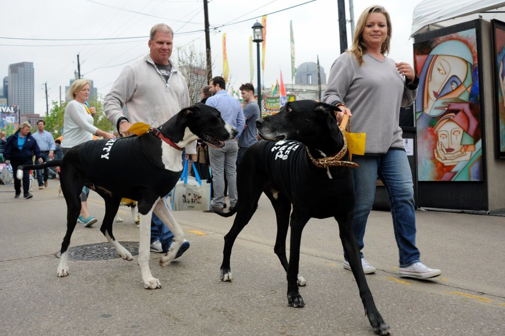 Costumed dogs walk in the annual pet parade at the Deep Ellum Arts Festival.