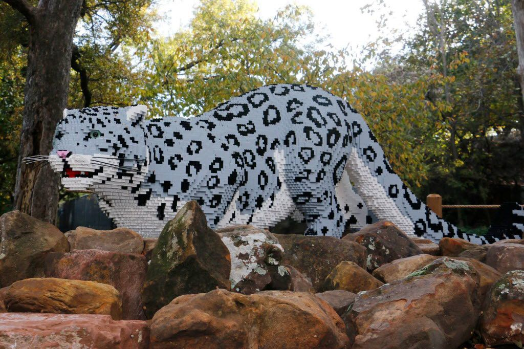 A snow leopard sculpture made of 63,379 LEGO bricks is on display at the Dallas Zoo as part of its Nature Connects exhibit. The zoo attributed part of its success in reaching a million visitors to the LEGO exhibit.