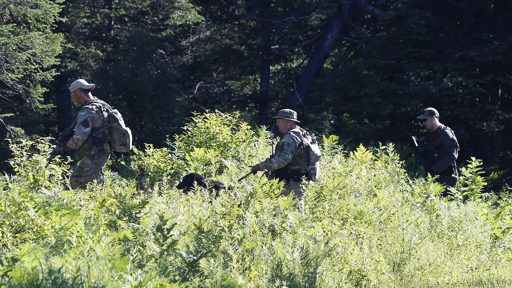 Law enforcement officers walk into the woods as the search continues for two escaped prisoners from Clinton Correctional Facility, on Wednesday, June 24, 2015, in Mountain View, N.Y.  Hundreds of searchers checked ATV trails and logging roads and went door-to-door in far northern New York trying to close in on David Sweat and Richard Matt, who escaped from the maximum-security prison more than two weeks ago. (AP Photo/Mike Groll)