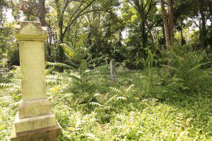 Another look inside McAdam's Cemetery (Courtesy Barry Koda)