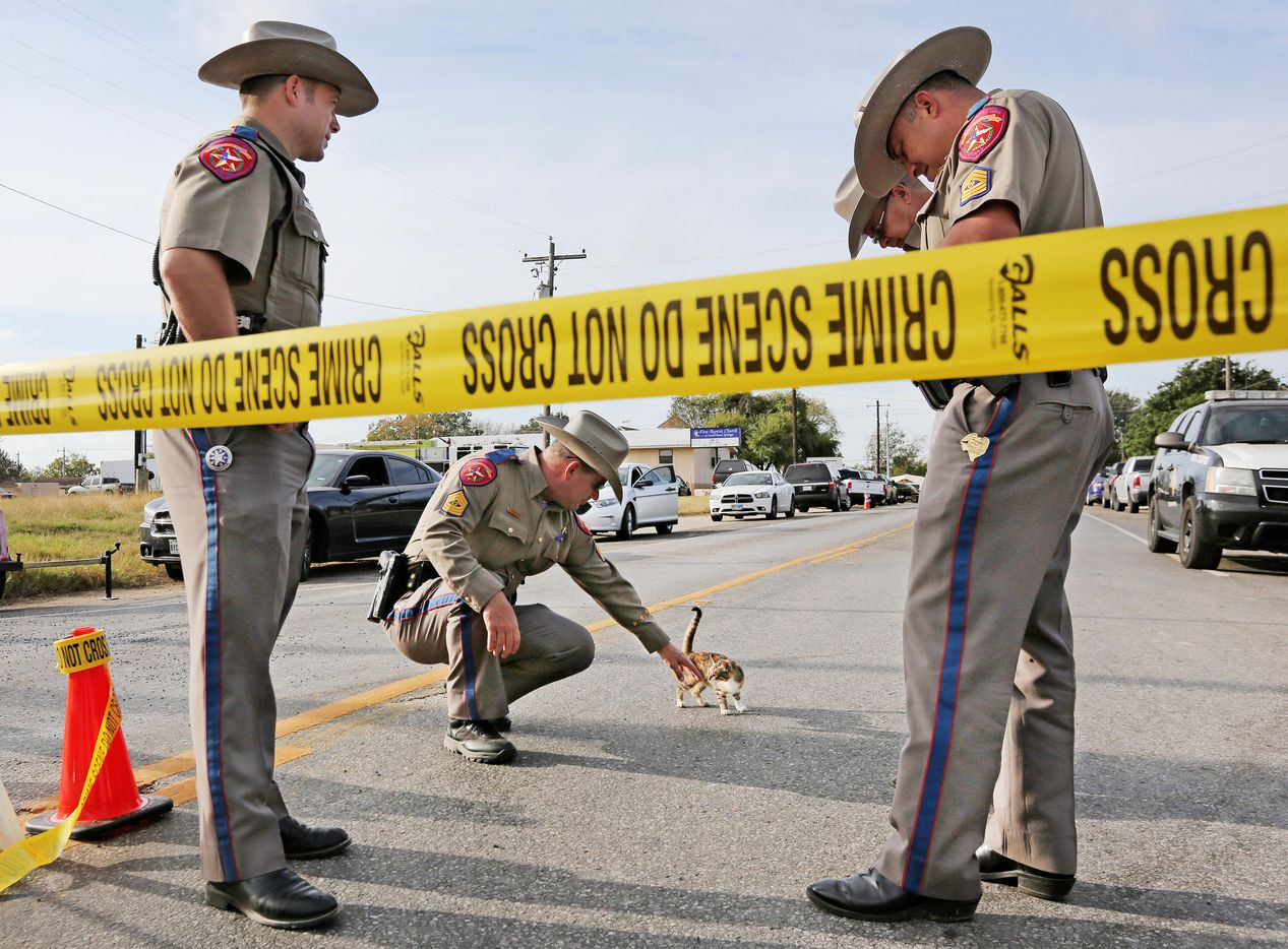 Texas State trooper John Henke visits with a kitten who wanders by the blockcade on the road outside the First Baptist Church of Sutherland Springs, Texas. At least 26 people died Sunday after a gunman opened fire at a Baptist church in the small town southeast of San Antonio. Photographed on Monday, November 6, 2017. Also pctured are troopers Justin Aguilar, Sid Pullin and Mike Cantu, left to right. (Louis DeLuca/The Dallas Morning News)