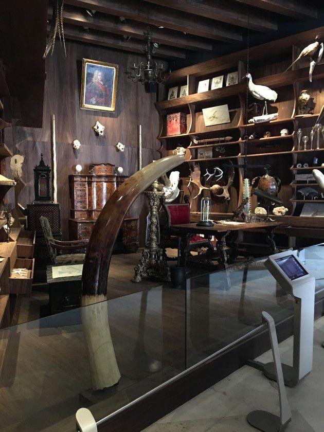 El gabinete de las curiosidades.