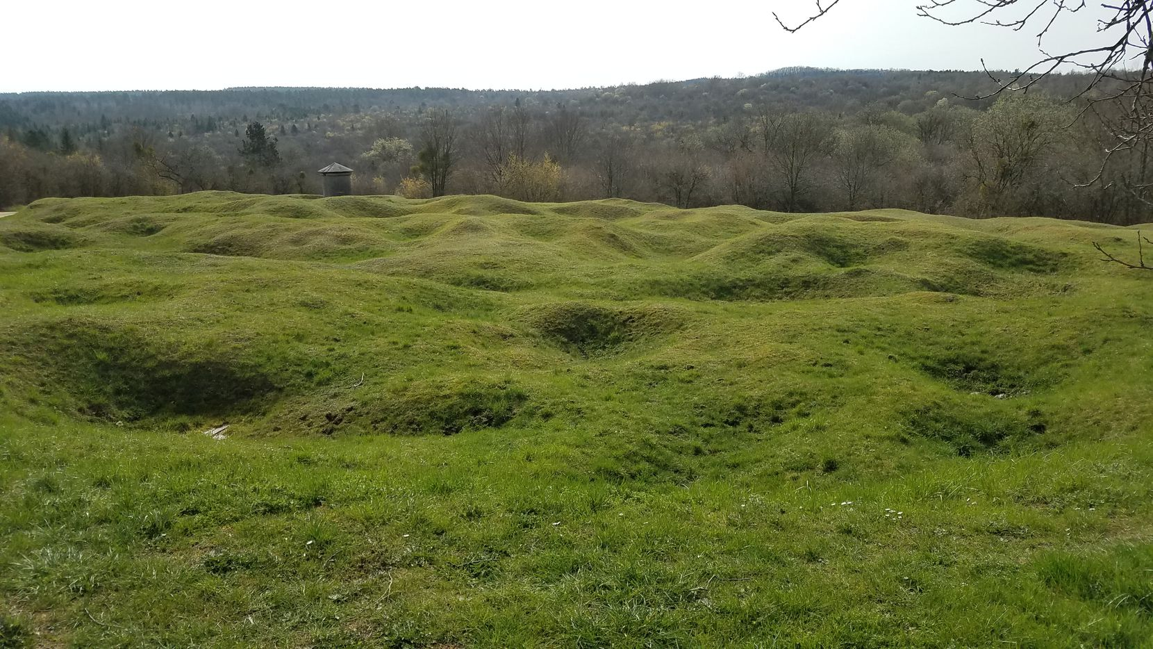The ground still bears the scars of the tens of millions of artillery shells fired during the Battle of Verdun, which raged for 10 months in 1916.